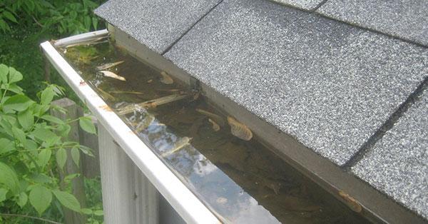 water in gutters